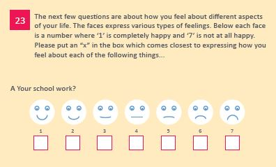 Young person's questionnaire