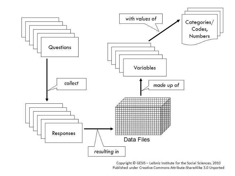 Flowchart explaining the process of data collection and the creation of different metadata items