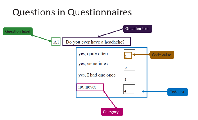 Detailed explanation of the different elements that make up a survey question